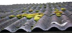Gera žinia norintiems pasikeisti senus asbesto stogus